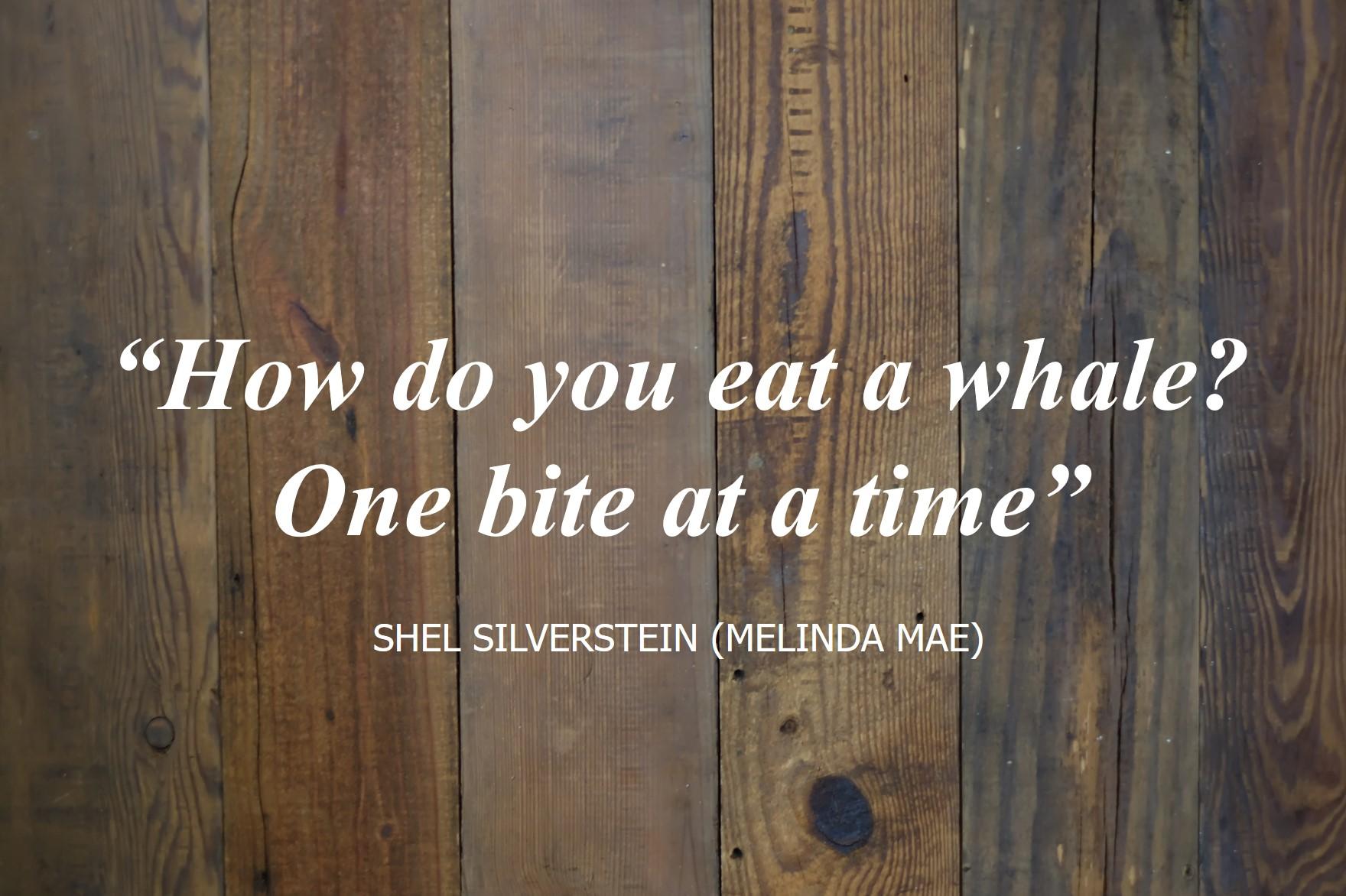 Shel_Silverstein_MelindaMae.jpg